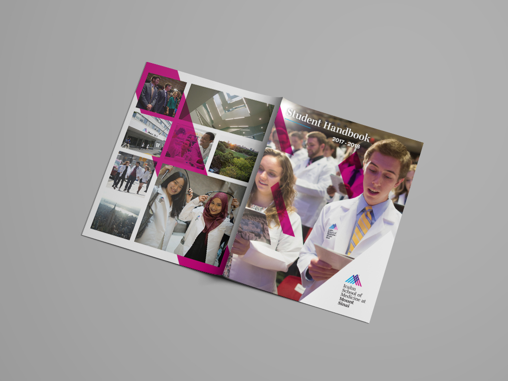 ISMMS Admissions Materials – Stephanie Houle